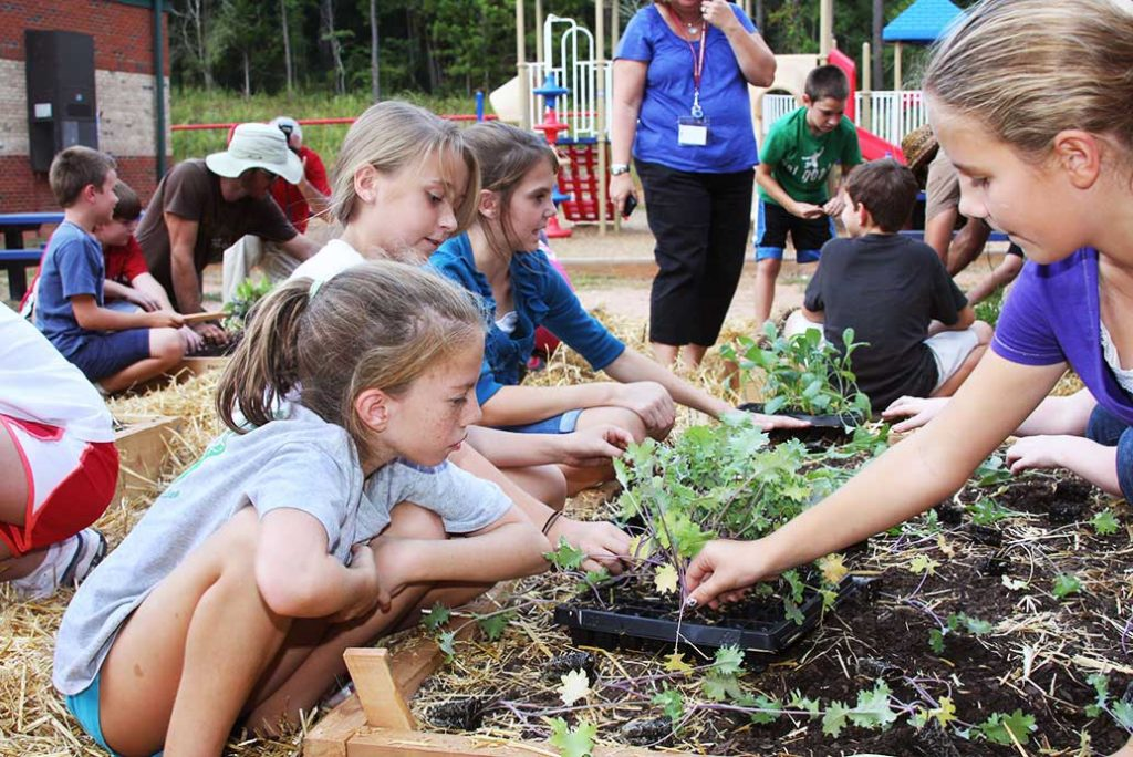 Youth gardening - CSU Extension