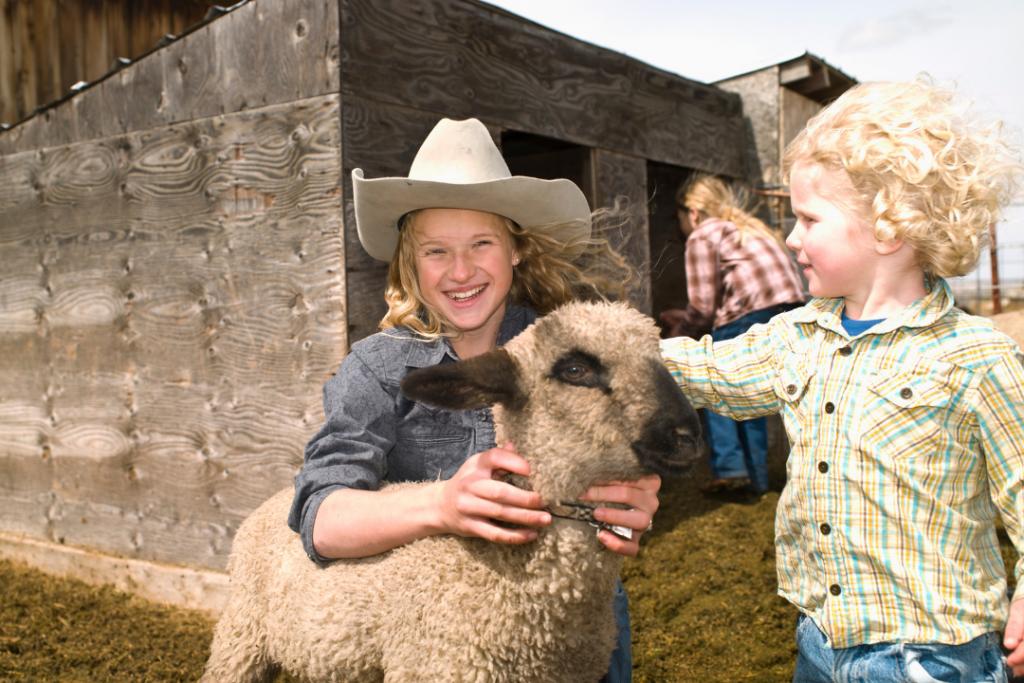 kids at a fair with a sheep