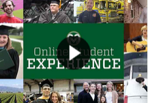 The Online Student Experience